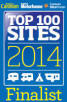 Top 100 Sites Finalist 2014