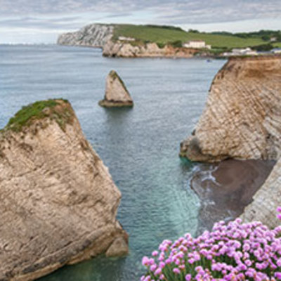 Places to go on your holiday - Freshwater Bay  Image